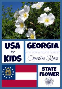Georgia State Flower