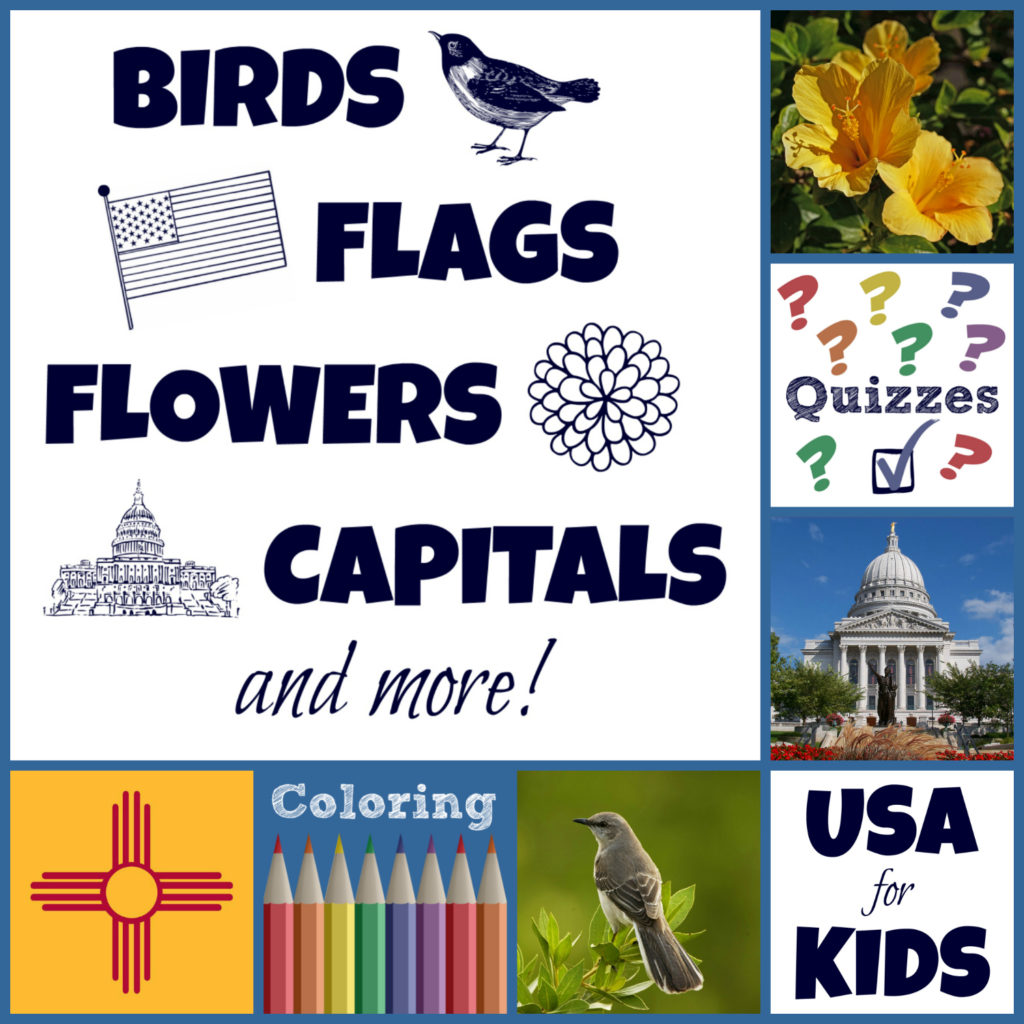 USA Facts for Kids