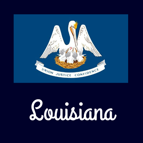 Louisiana Facts for Kids