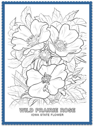 state coloring pages with facts - hawkeye state archives usa facts for kids