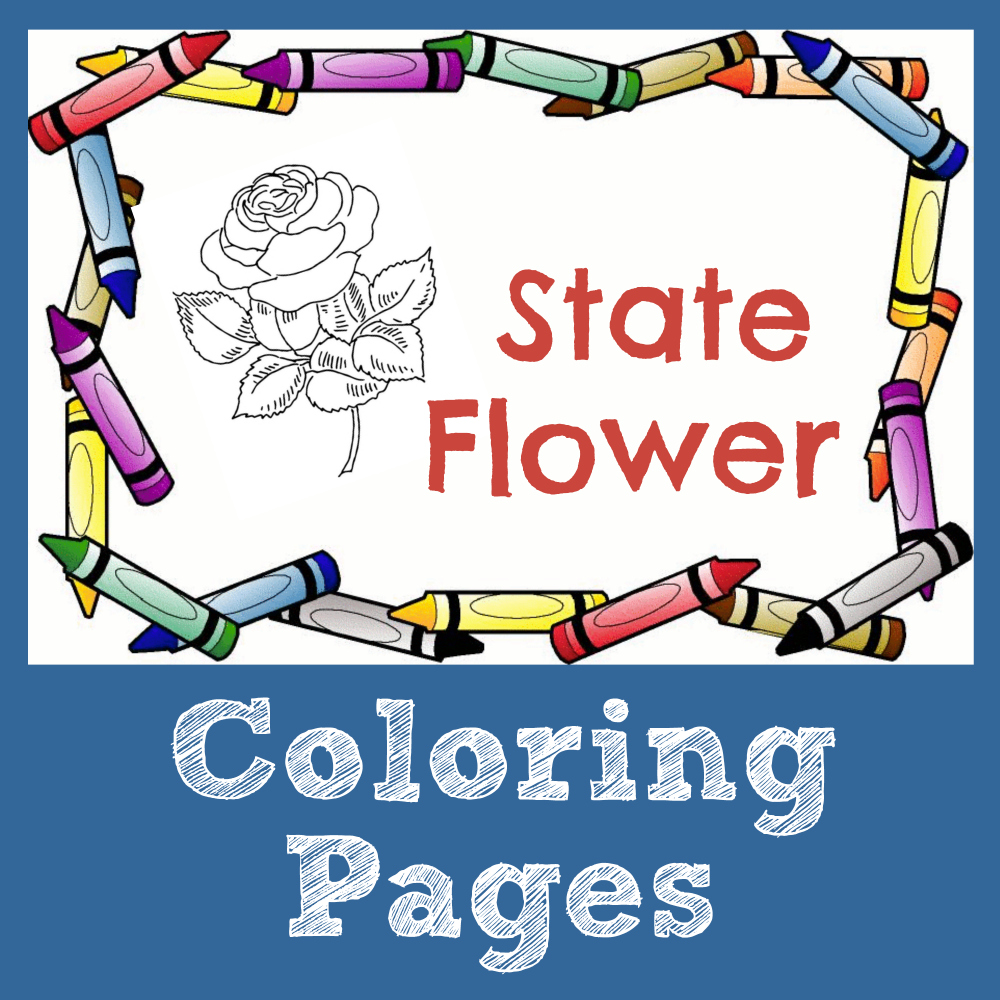 State Symbol Coloring Pages ...