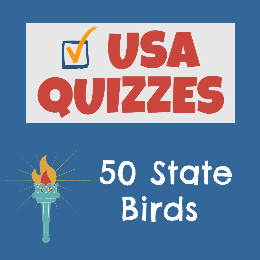 USA Quizzes